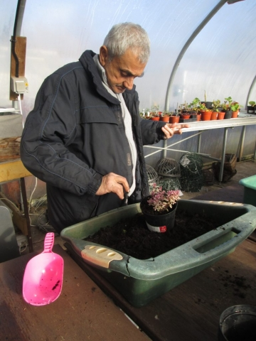 The Therapy Garden cultivating skills in Normandy Surrey