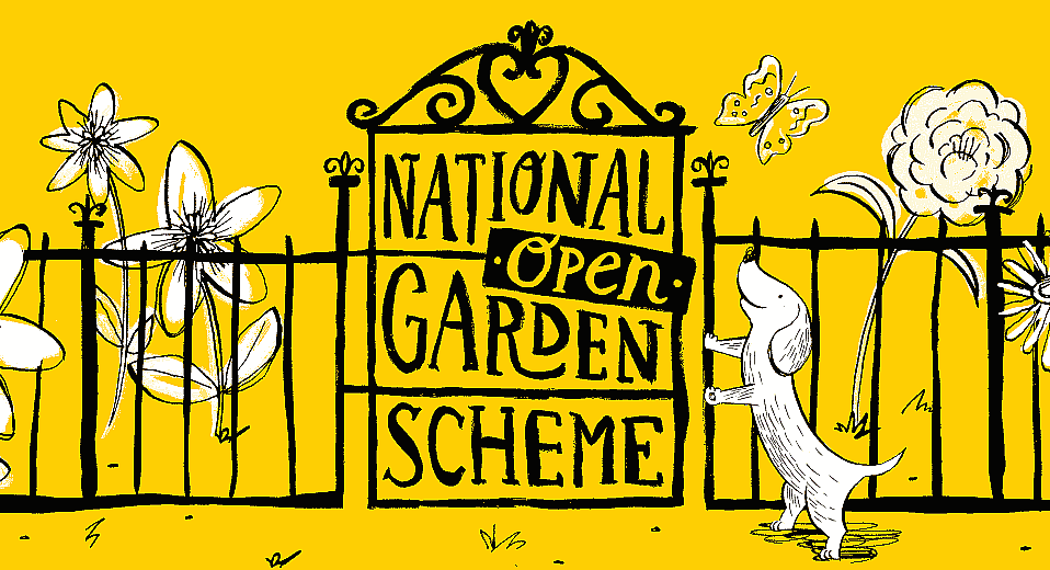 Join us on Sunday 1st September for our NGS Open Day